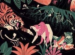Illustration   The Jungle Book – André Ducci