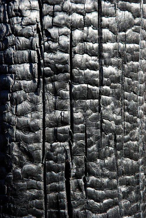 Textures | Black Noir Preto Ebony Sable Onyx Charcoal O