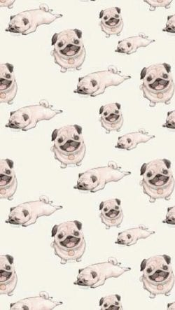 Patterns | Cute❤ Dog Vintage iPhone 5 Wallpaper from weheartit.c