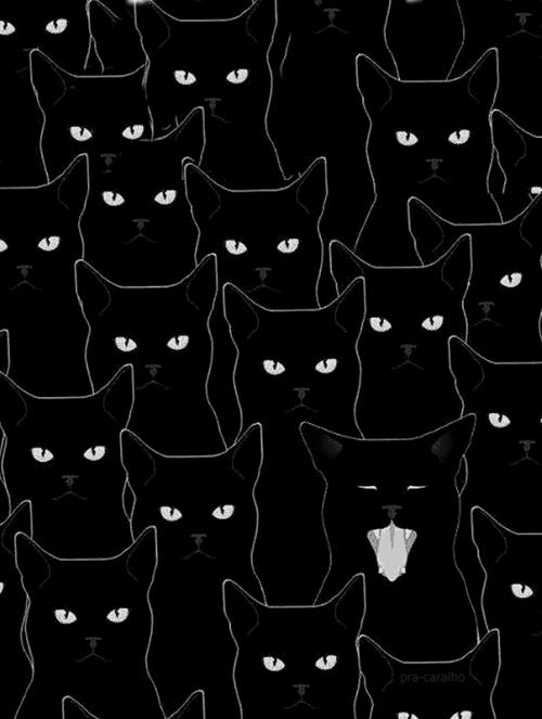 Patterns   Dark Cat Eyes Pattern