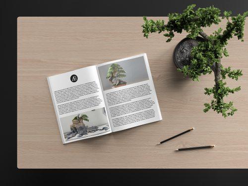 Asset | Modern Catalog Magazine Mockup