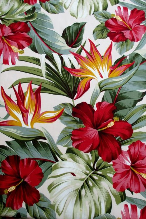Patterns   Fabric Red Hibiscus Floral on Cream Tropical Hawaii Bird of