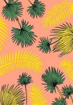 Patterns | Elena Boils Tropical Palms Pattern