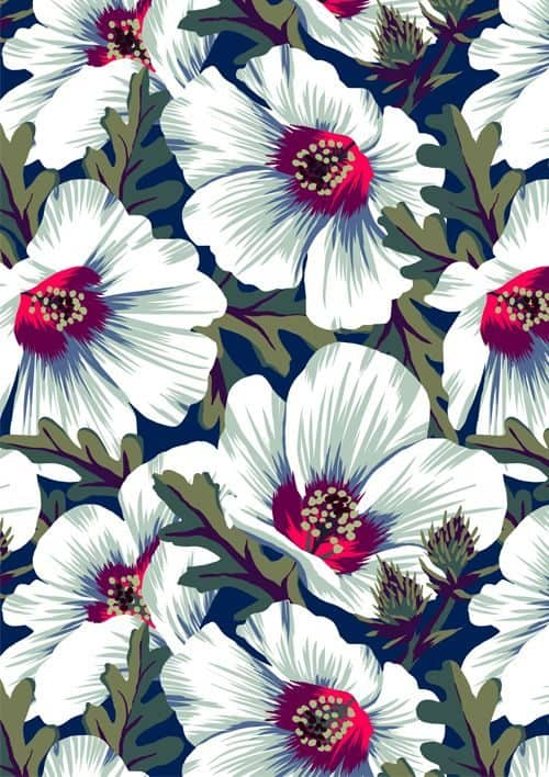 Patterns   NZ Hibiscus Floral Print