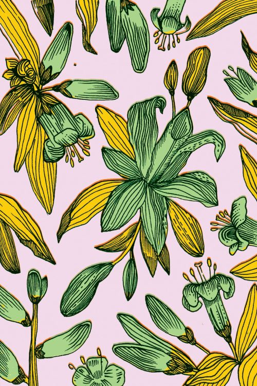 Patterns | Elena BoilsGreen and Yellow Floral Pattern