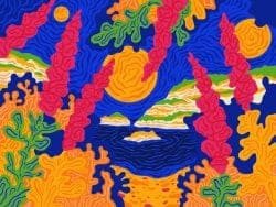 Illustration   Procreate Summer Color