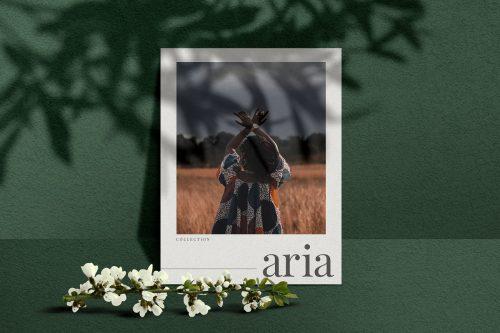 Aria – Mockup Scene Creator ~ Scene Creator Mockups ~ Creative Market