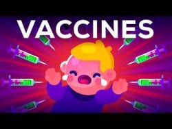 The Side Effects of Vaccines – How High is the Risk? Animation
