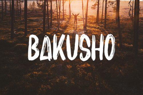 Asset | Bakusho Font Typeface