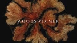 WoodSwimmer (Bedtimes Music Video) – Stop-Motion cross-sectional photographic music video  ...