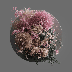Peter Tarka _ Abstract Compositions and Renders made with C4D, Octane and Photoshop 09
