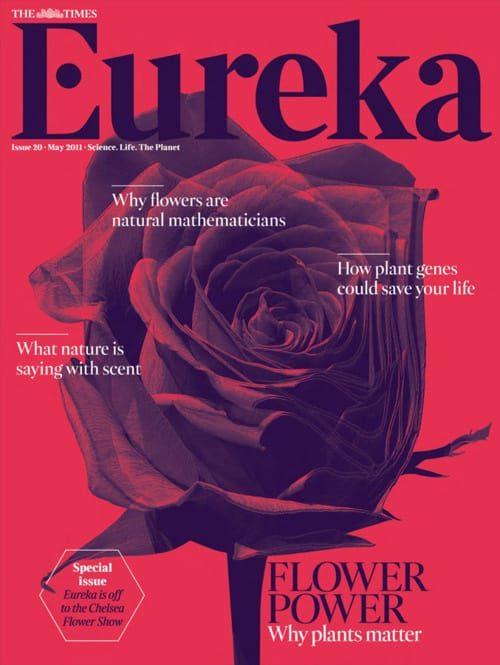 Eureka London UK Magazine Cover – Rose