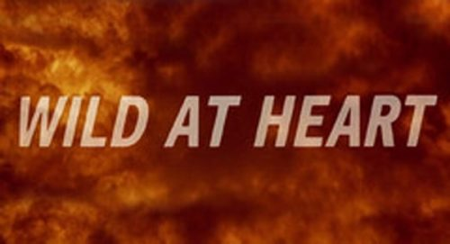 Wild at Heart Title Treatment