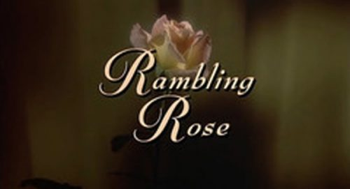 Rambling Rose Title Treatment