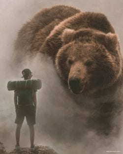 Surreal and beautiful photography and photoshop editing – Egzon Muliqi – Bear