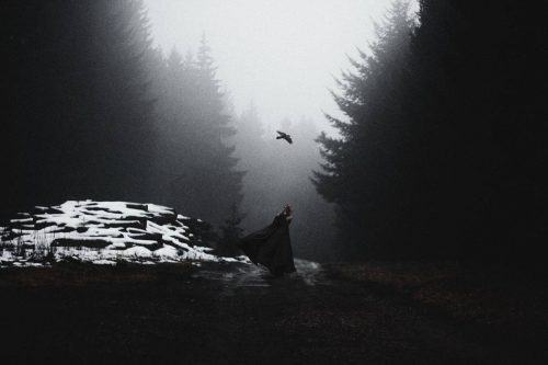 Stunning Surreal Photography Manipulation – Pulkit Kamal – Forest