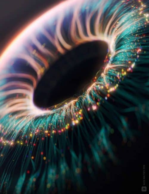 Photography | Macro Shot of the Lens of the eye | Edited with Photoshop