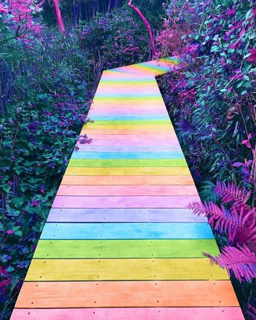 Ramzy Masri – Vibrant Rainbow Spectrum Edits – Wooden Path
