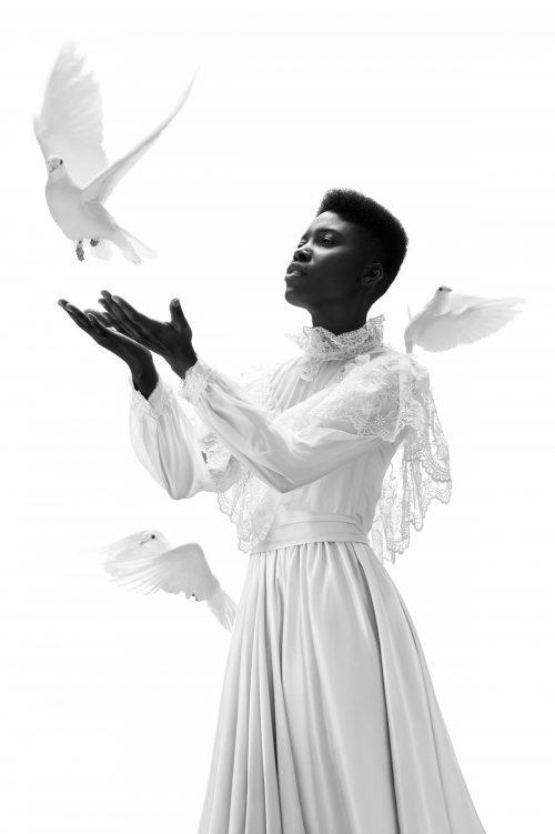 Angelic Dove Photography
