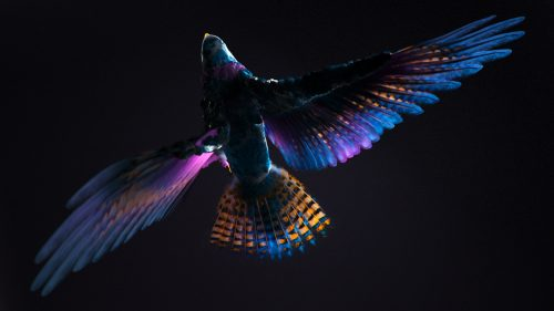 3D Vibrant Atmospheric Render Design – Wacom & Iris London – FutureDeluxe ̵ ...