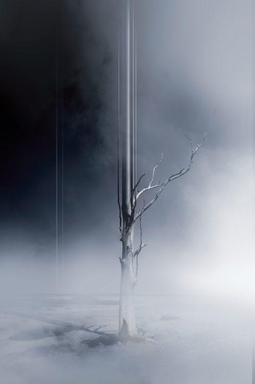 Øystein Sture Aspelund – Arise – Dead Trees Photomanipulation – Pixel Stretch