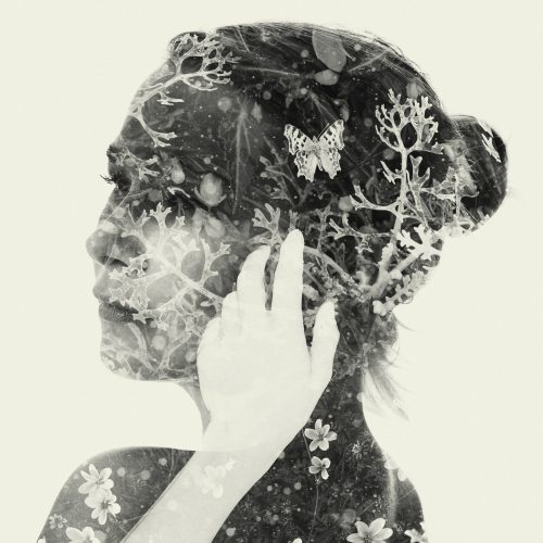 Double Exposure Nature Silhouette Photography Design