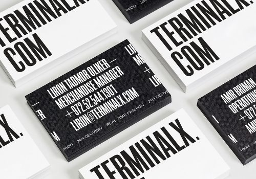 Terminal X – Prepare for Takeoff – Packaging and Typographical Design