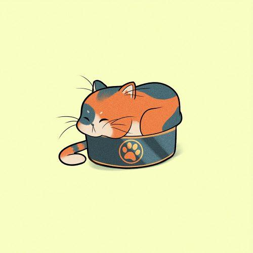 Cute Cat Mishos Illustrations