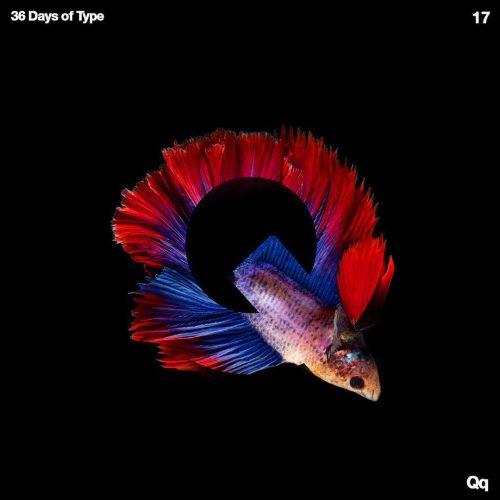 Sushante Bhosle 36 Days of Type Design – Q Fish