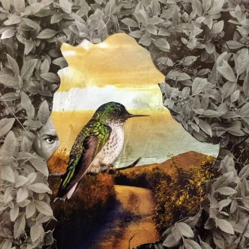 Ginger Lou Collage Mixed Media Style Art – Hummingbird