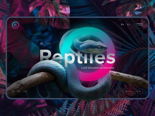 Reptiles Snake Web Design UI UX Vaporwave