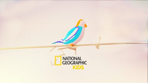 National Geographic Kids Network Brand Identity Paper Craft Style Design