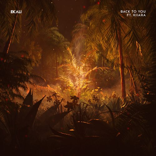 EKALI Back to you Album Cover Design – Forest Fire
