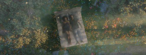 ORELSAN – PARADIS – 2D Illustrations meets 3D – bed of flowers