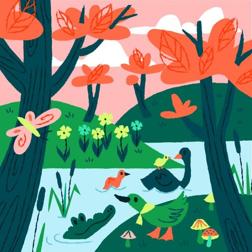 Illustrations by Anna Hurley