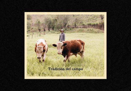 Catalan Delicatessen Meat Deli Packaging Design Brand Branding Identity Colombian Tradition
