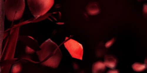3D Rose Petal Skull – C4D Vray