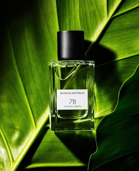 Creative Product Photography Layout Examples Banana Republic Palm Plant Cologne Perfume