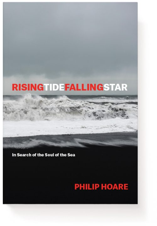 Novel Book Art Jacket Cover Design Story Editorial Magazine Rising Tide Falling Star Waves Sea