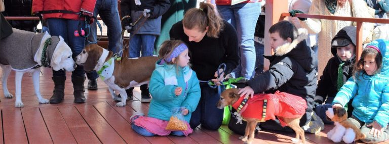 Are You Going to Enter the Fun Dog Show This Year?