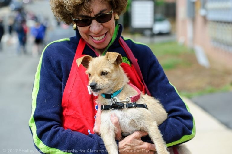Alexandria Pet Day THIS Sunday–Over 60 Vendors, Fun for Whole Family!