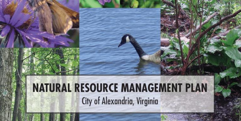 Alexandria Holding Public Hearing Regarding Natural Resource Management, January 17