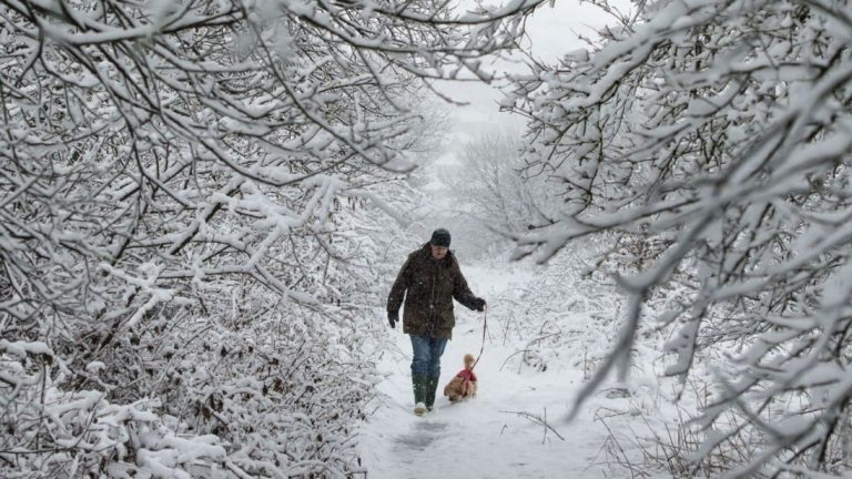 20 Things You May Not Know About Snow