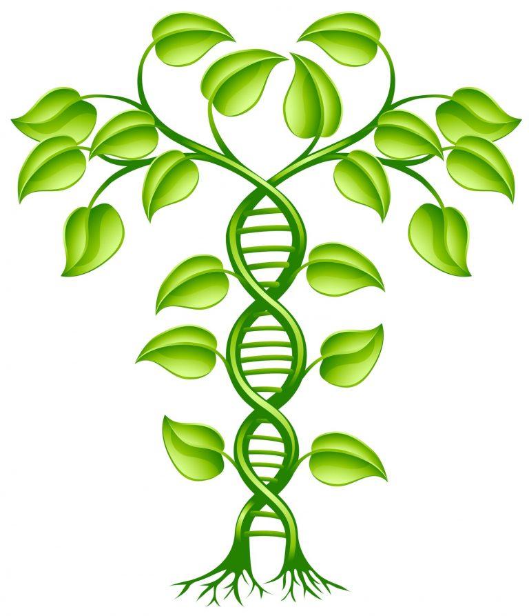 DNA's Deep Roots