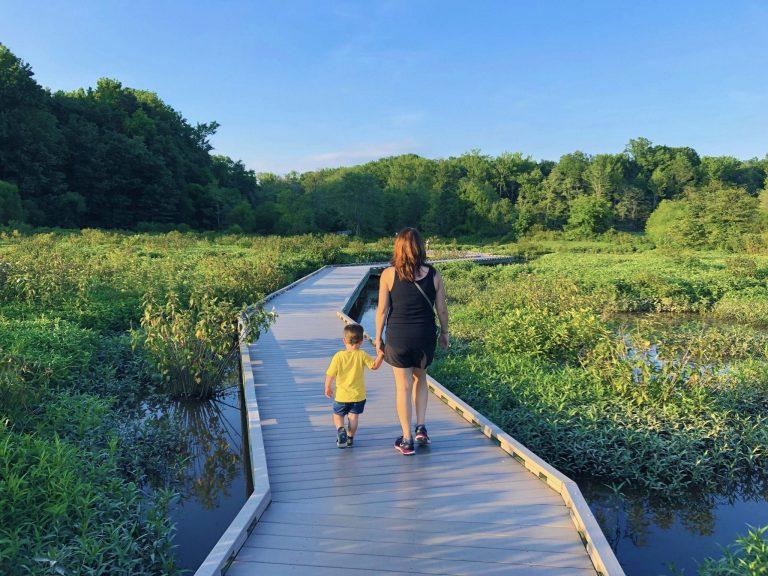 Little Alexandria: Huntley Meadows Park