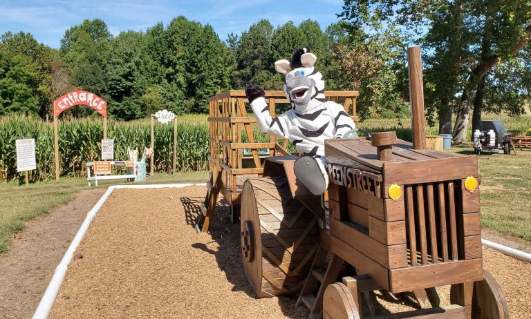 It's Fall Festival Time at Greenstreet Gardens!