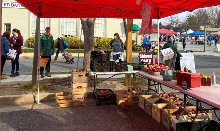At the Del Ray Farmers' Market, Shlagel Farms Helps Raise $1,000 for ALIVE! with Giving Box