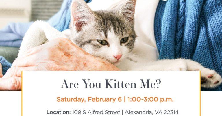 Sunrise Senior Living Hosts Adoption Event at Mount Purrnon Cat Cafe and Wine Bar