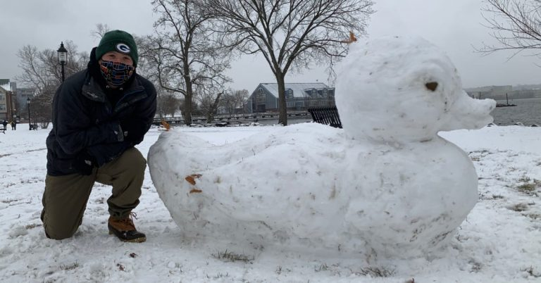 Snow Duck Sculpture in Oronoco Bay Park Honors Disappeared Duck