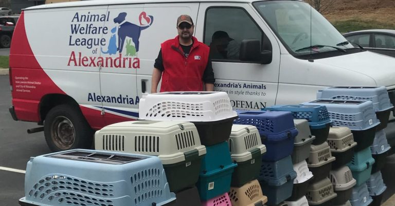AWLA Transports 50 Cats Halfway Across the Country